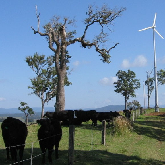 Hummer 3KW Wind Turbine For Farm