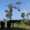 Hummer 3KW Wind Turbine For Farm